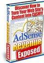 Adsense Revenue Exposed ebook