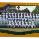2002 Topps Tampa Bay Devil Rays 22 card team SET