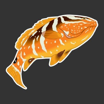 Grouper Fishing Decal