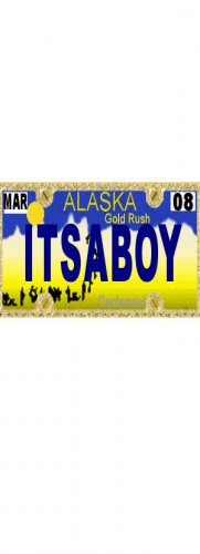 30 ALASKA License Plate BOY Baby Shower Candy Bar Wrappers Hershey's Nugget Labels Party Favors