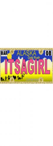 30 ALASKA License Plate GIRL Baby Shower Candy Bar Wrappers Hershey's Nugget Labels Party Favors