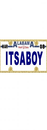30 ALABAMA License Plate BOY Baby Shower Candy Bar Wrappers Hershey's Nugget Labels Party Favors