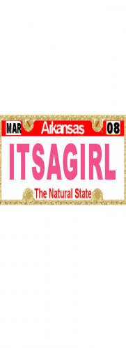 30 ARKANSAS License Plate GIRL Baby Shower Candy Bar Wrappers Hershey's Nugget Labels Party Favors