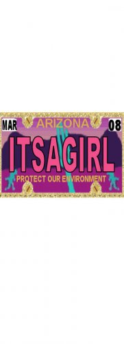 30 ARIZONA License Plate GIRL Baby Shower Candy Bar Wrappers Hershey's Nugget Labels Party Favors