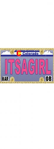 30 COLORADO License Plate GIRL Baby Shower Candy Bar Wrappers Hershey's Nugget Labels Party Favors