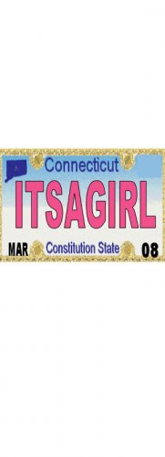 30 CONNECTICUT License Plate GIRL Baby Shower Candy Bar Wrappers Hershey Nugget Labels Party Favors