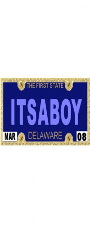 30 DELAWARE License Plate BOY Baby Shower Candy Bar Wrappers Hershey's Nugget Labels Party Favors