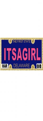 30 DELAWARE License Plate GIRL Baby Shower Candy Bar Wrappers Hershey's Nugget Labels Party Favors