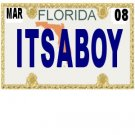 30 FLORIDA License Plate BOY Baby Shower Candy Bar Wrappers Hershey's Nugget Labels Party Favors