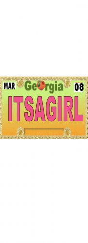 30 GEORGIA License Plate GIRL Baby Shower Candy Bar Wrappers Hershey's Nugget Labels Party Favors