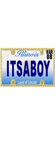 30 ILLINOIS License Plate BOY Baby Shower Candy Bar Wrappers Hershey's Nugget Labels Party Favors