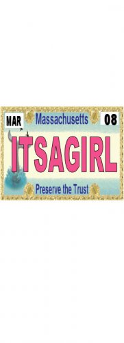 30 MASSACHUSETTS License Plate GIRL Baby Shower Candy Bar Wrappers Nugget Labels Party Favors