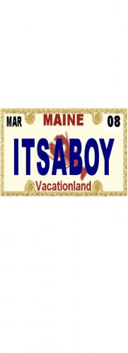 30 MAINE License Plate BOY Baby Shower Candy Bar Wrappers Hershey's Nugget Labels Party Favors