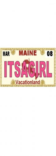 30 MAINE License Plate GIRL Baby Shower Candy Bar Wrappers Hershey's Nugget Labels Party Favors