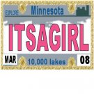 30 MINNESOTA  License Plate GIRL Baby Shower Candy Bar Wrappers Hershey's Nugget Labels Party Favors