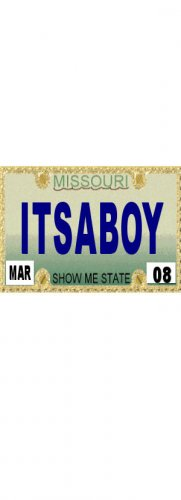 30 MISSOURI  License Plate BOY Baby Shower Candy Bar Wrappers Hershey's Nugget Labels Party Favors