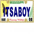30 MISSISSIPPI  License Plate BOY Baby Shower Candy Bar Wrappers Hershey Nugget Labels Party Favors