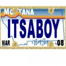 30 MONTANA License Plate BOY Baby Shower Candy Bar Wrappers Hershey's Nugget Labels Party Favors