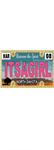 30 NORTH DAKOTA License Plate GIRL Baby Shower Candy Bar Wrappers Nugget Labels Party Favors