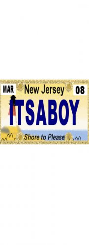 30 NEW JERSEY License Plate BOY Baby Shower Candy Bar Wrappers Hershey's Nugget Labels Party Favors