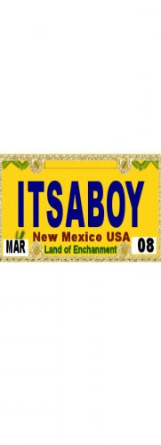 30 NEW MEXICO License Plate BOY Baby Shower Candy Bar Wrappers Hershey's Nugget Labels Party Favors