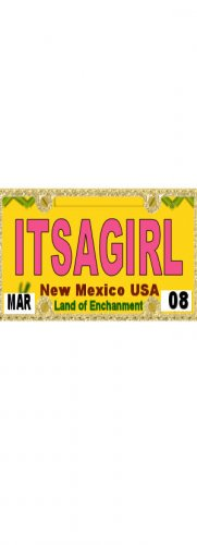 30 NEW MEXICO License Plate GIRL Baby Shower Candy Bar Wrappers Hershey's Nugget Labels Party Favors
