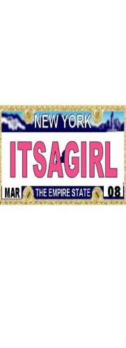30 NEW YORK License Plate GIRL Baby Shower Candy Bar Wrappers Hershey's Nugget Labels Party Favors