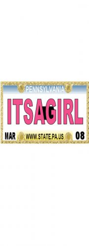 30 PENNSYLVANIA License Plate GIRL Baby Shower Candy Bar Wrappers Hershey Nugget Labels Party Favors