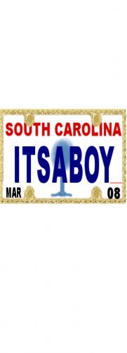 30 SOUTH CAROLINA License Plate BOY Baby Shower Candy Bar Wrappers Nugget Labels Party Favors