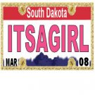 30 SOUTH DAKOTA License Plate GIRL Baby Shower Candy Bar Wrappers Nugget Labels Party Favors