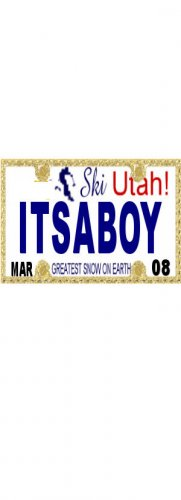 30 UTAH License Plate BOY Baby Shower Candy Bar Wrappers Hershey's Nugget Labels Party Favors