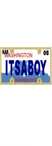30 WASHINGTON License Plate BOY Baby Shower Candy Bar Wrappers Hershey's Nugget Labels Party Favors