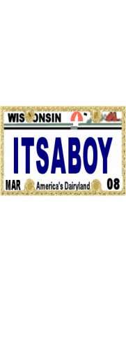 30 WISCONSIN License Plate BOY Baby Shower Candy Bar Wrappers Hershey's Nugget Labels Party Favors
