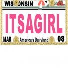 30 WISCONSIN License Plate GIRL Baby Shower Candy Bar Wrappers Hershey's Nugget Labels Party Favors