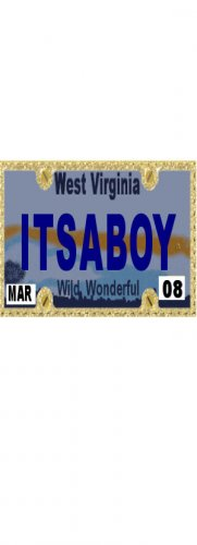 30 WEST VIRGINIA License Plate BOY Baby Shower Candy Bar Wrappers Hershey Nugget Labels Party Favors