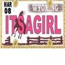 30 WYOMING License Plate GIRL Baby Shower Candy Bar Wrappers Hershey's Nugget Labels Party Favors