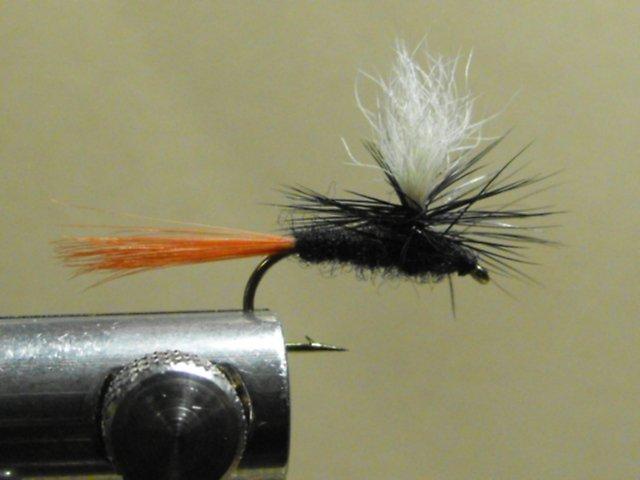 Black Gnat, Red Tail - Parachute