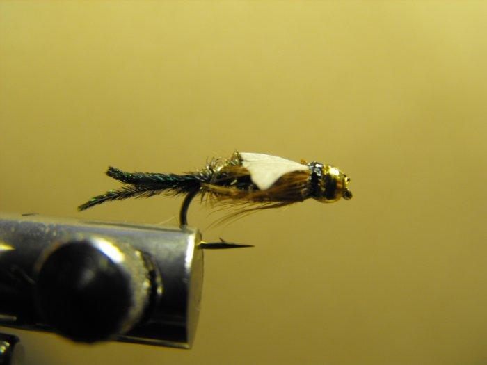 Zug Bug - Brass Bead Head