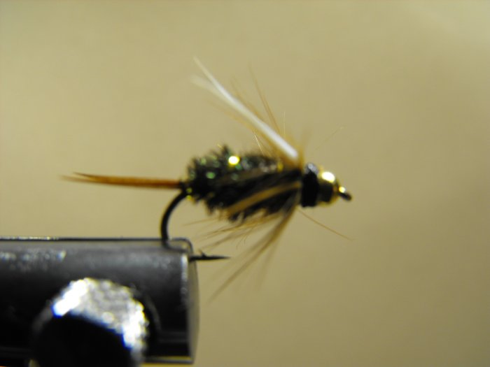 Prince Nymph, Brass Bead Head