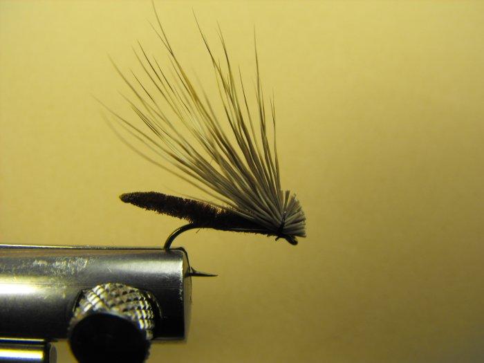 Extended Bodied Elk Hair Caddis - Brown