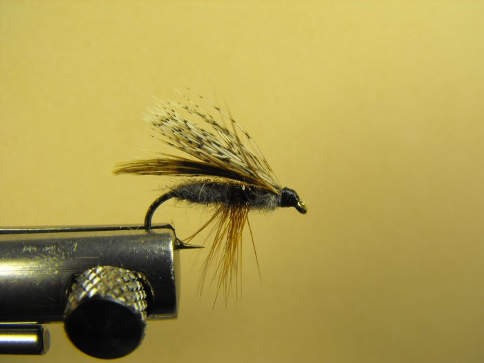 Partridge Adult Caddis - Dry Fly