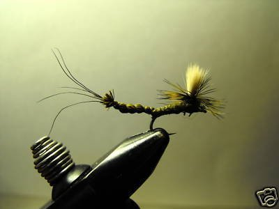 1 Dzn - Par Olive Drake May Fly -  Dry Fly - Trout