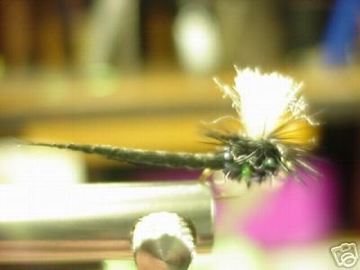 1 Dzn - Par Black Drake May Fly -  Dry Fly - Trout