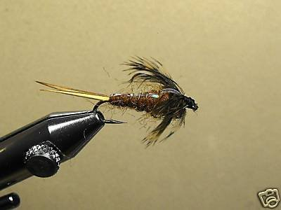 12 Flash Back BWN Stone Fly Nymph - Wet Fly - Trout