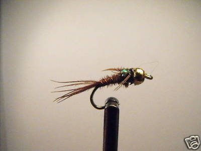 12 FB Brass Bead Pheasant Tail Nymph Wet Fly Trout