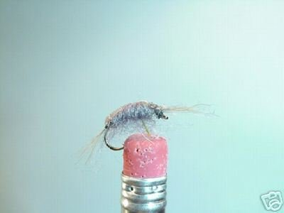 1 Dozen -  Scud Nymph   Gray Fly Assortment