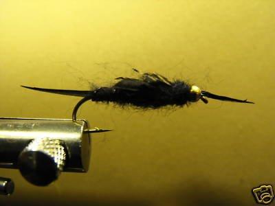 1 dozen - BH Black Stonefly Nymph - Trout Wet Fly