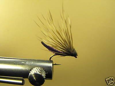 12 Extended Bodied Elk Hair Caddis - Dry Fly  DK Purple