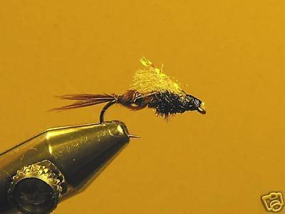 1 Dzn Pheasant Tail Emerger Nymph Wet Fly Trout