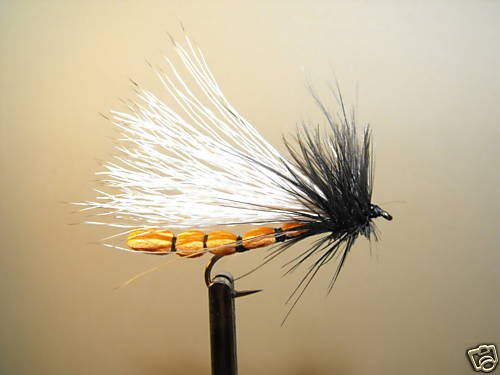 12 Ong Adult Stonefly Dry Fly Trout, Steelhead, Salmon